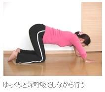 胸を大きくするバストアップ腕立て伏せ(2)